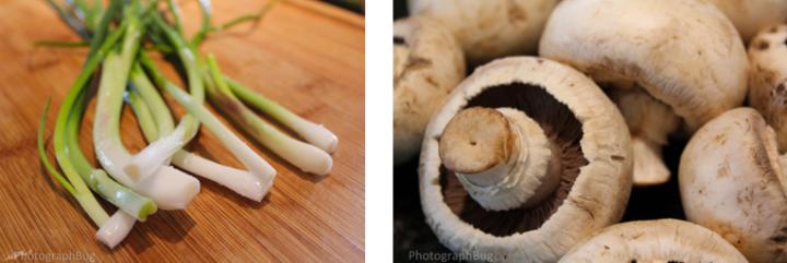 Green Onion Mushroom