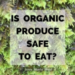 Is Organic Produce Safe to Eat?