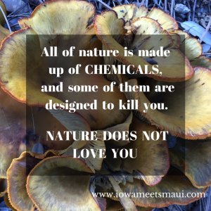 Nature Does Not Love You
