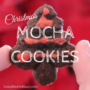 Starbucks Via Christmas Mocha Cookies