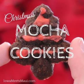Starbucks Via Christmas MochaCookies
