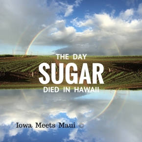 The Day Sugar Died, A Sad Day For The Islands