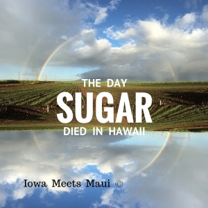 The Day Sugar Died in the Islands