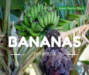 Bananas for Africa
