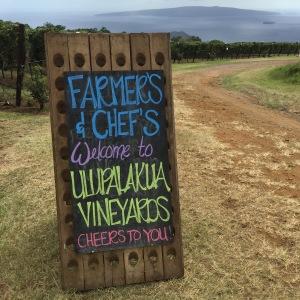Welcome to Maui Wine