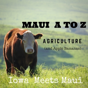 Maui A to Z: Agriculture