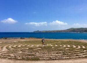 Maze on Maui