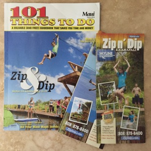 Ads for Skyline Zipline
