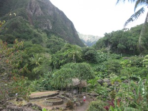 Iao Valley Farm
