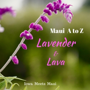 Maui A to Z: Lavender and Lava