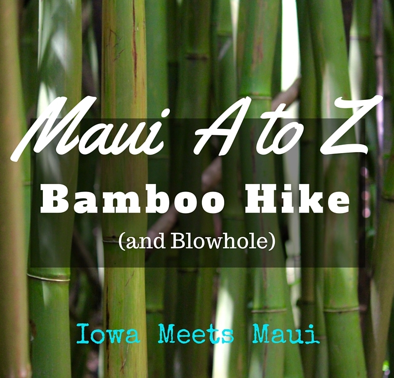 Bamboo Hike Blow Hole