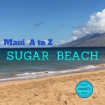 A to Z Cover Sugar Beach