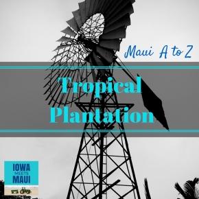 Maui A to Z: TropicalPlantation