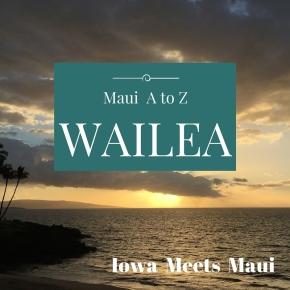 Maui A to Z:Wailea