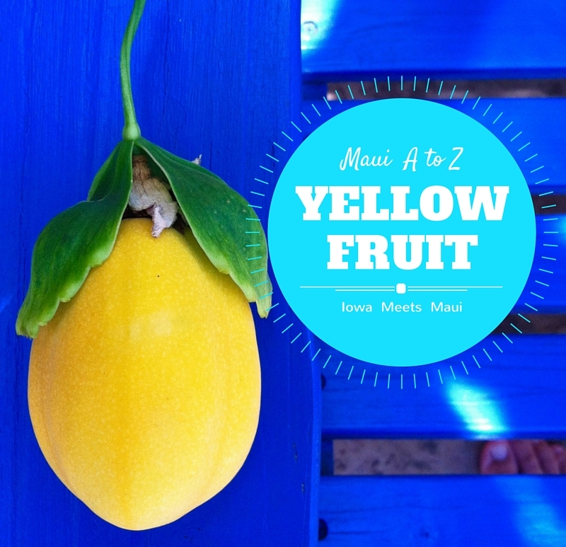 Yellow Fruit Cover