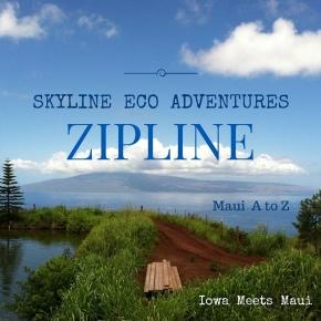 Maui A to Z:Zipline