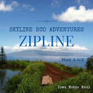Skyline Eco Adventures Zipline Cover With View of Outer Island