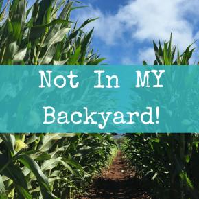 Not In MYBackyard